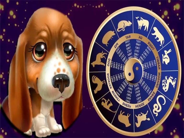 Собаки по знаку зодиака картинки