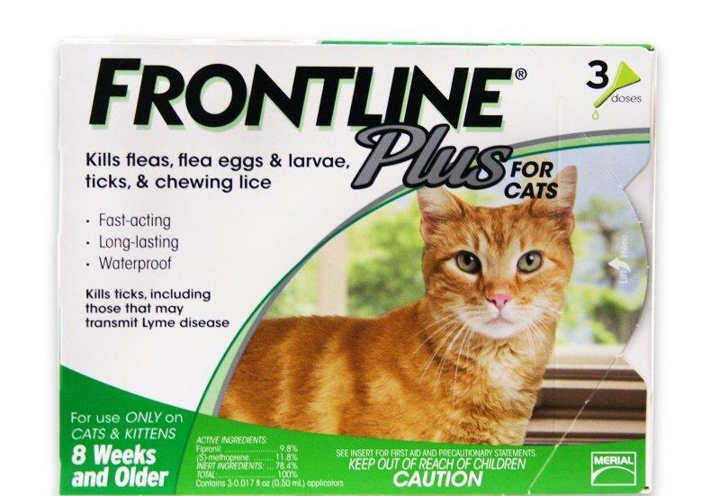 Фронтлайн для кошек (45 фото): капли от блох для котят, комбо для собак, использование от клещей, инструкция по применению