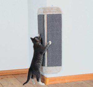 Как сделать когтеточку для кошки своими руками: мастер-класс 38