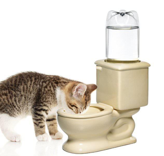 Как выбрать автоматический кошачий туалет с лотком?