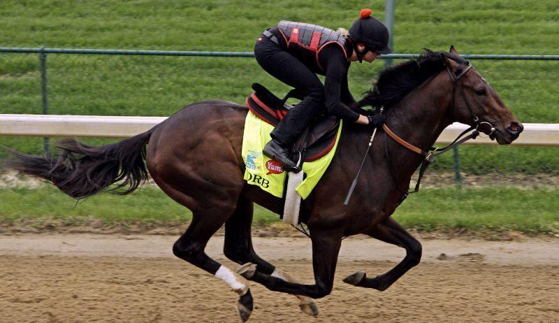 Лошадь иноходец