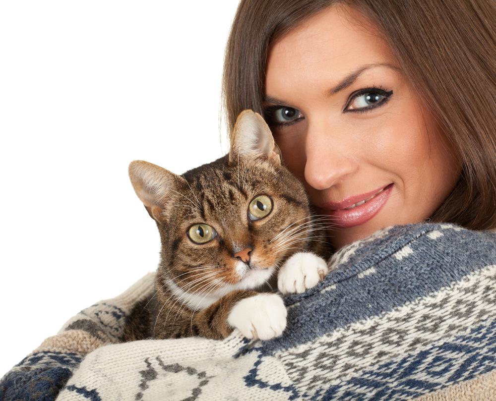 Обожаю кошек