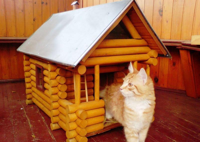 Конура для кошки