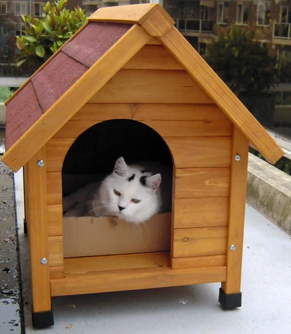 Дом на улице для кота своими руками