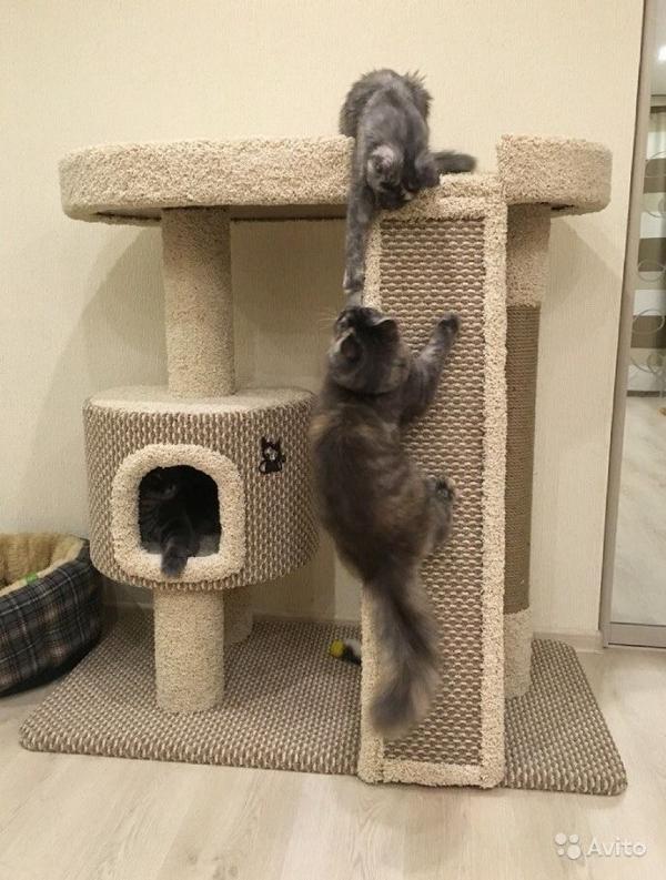 Дом-когтеточка для кошек своими руками