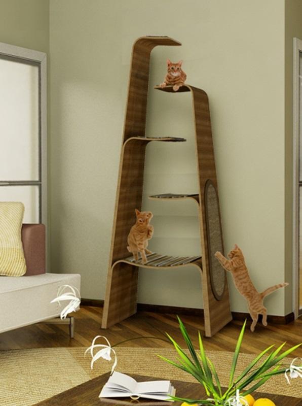 Тренажёры для кошек