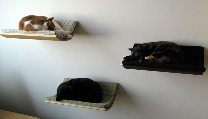 Как сделать лежанку для кошки видео
