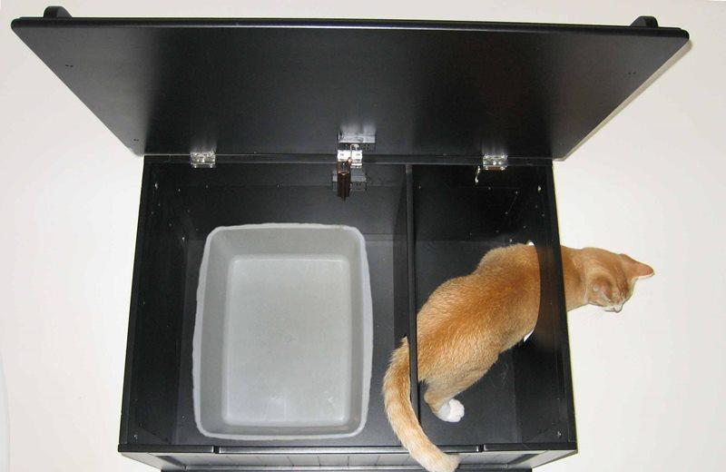 Британские котята игрушки своими руками 47